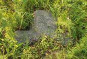 Каменны крыж на могілках ля вёскі Адрыянава, Чашніцкі раён. Фотаздымак з сайта https://fgb.by