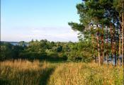 Замчышча (месца, дзе стаяла крэпасць Суша). Фотаздымак з сайта https://www.radzima.org