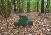 Старажытны каменны крыж у в. Буторы. Фотаздымак  з сайта http://www.fotobel.by