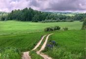 Гарадзішча каля вёскі Мяклава. Фотаздымак з сайта http://evitebsk.com/wiki