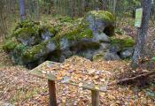 Змееў камень, в. Гогалеўка. Чашніцкі раён. Фотаздымак з сайта http://www.fotobel.by