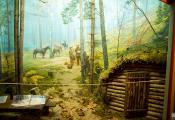 Дыярама «Партызанскі лагер» у музеі Обальскага камсамольскага падполля. Фота з сайта https://hawat.by