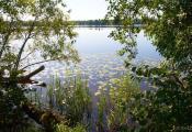 Возера Сумаўка. Мёрскі раён. Фотаздымак з сайта http://www.fotobel.by
