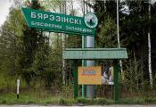 Бярэзінскі біясферны запаведнік, Лепельскі раён. Фатаграфія з сайта http://stanislav-05.livejournal.com