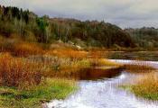 Віцебскі раён, заказнік «Чортава барада». Фотаздымак з сайта http://evitebsk.com