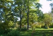 Заказнік «Голубаў сад», Глыбоцкі раён. Фатаграфія з сайта http://www.zakazniki.priroda-vitebsk.by