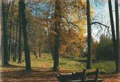 У парку Юзафполле. Фотаздымак з фотаальбома «Толочинский район», аўтар А. В. Маладзечкін