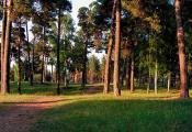 Віцебск. Юр'ева горка. Фотаздымак з сайта  http://evitebsk.com